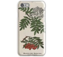 Wayside and woodland blossoms a pocket guide to British wild flowers for the country rambler  by Edward Step 1895 117 Mountain Ash Rowan Tree iPhone Case/Skin