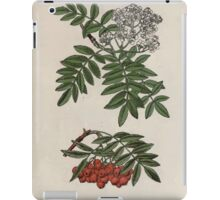 Wayside and woodland blossoms a pocket guide to British wild flowers for the country rambler  by Edward Step 1895 117 Mountain Ash Rowan Tree iPad Case/Skin