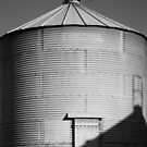 Old Silo by Christopher Cullen