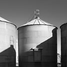 Old Silos by Christopher Cullen
