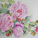 More roses by Beatrice Cloake