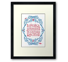 Whimsical Poppins! Framed Print