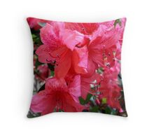 The Pinkest Pink - Throw Pillow & Greeting Card Throw Pillow
