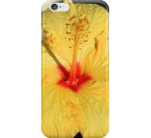 Fly on a Hibiscus Flower iPhone Case/Skin
