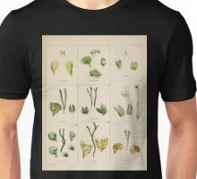 The botany of the Antarctic voyage of H M  discovery ships Erebus and Terror in the Years 1839 1843 Joseph Dalton Hooker V1 141 Unisex T-Shirt