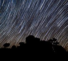 StarLights by Adam Armstrong