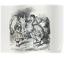John Tenniel - Alice Meets The Dodo, Illustration From  Alice S Adventures In Wonderland . Bird painting: cute fowl, fly, wings, lucky, pets, wild life, animal, birds, little small, bird, nature Poster