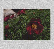 Deep Red Peony Garden One Piece - Short Sleeve