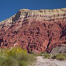 Red Rock - Salta Lanscape by DianaC