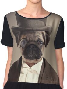 (Very) Distinguished Dog Chiffon Top