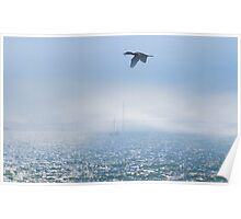 Cormorant Nest Building Supplies Poster
