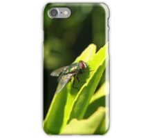 Fly on a Green Leaf iPhone Case/Skin