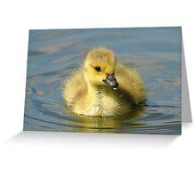 Talk To Me Goose   Greeting Card