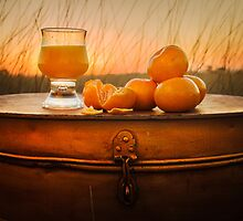 Mandarine Sunset by Julie Begg