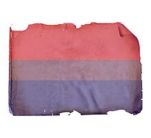 VINTAGE BISEXUAL FLAG Photographic Print