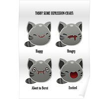 Tabby Slime Expression Chart Poster