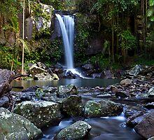 Curtis Falls - Mt Tamborine by Stephen Waller