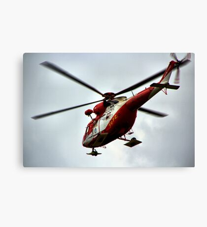 to the rescue... Canvas Print