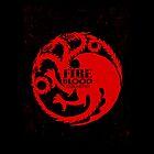 Targaryen Case by ArtichokesQueen