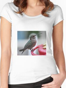 FEMALE HUMMER ON PERCH Women's Fitted Scoop T-Shirt