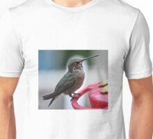 FEMALE HUMMER ON PERCH Unisex T-Shirt