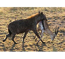 The hunt in Serengeti Tanzania Photographic Print