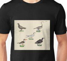 Naturgeschichte in Bildern mit erläuterndem Text E Strack 1820 Lief 2 Birds 033 Unisex T-Shirt