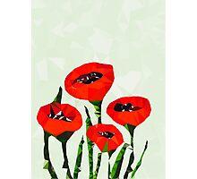 Digital Poppies Photographic Print