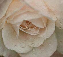 love poem by lucyliu
