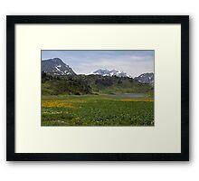 Austrian mountains in summer Framed Print