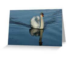 Swan Symmetry -  Graceful Cygnus Olor Greeting Card