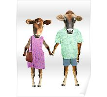 hipster cows Poster
