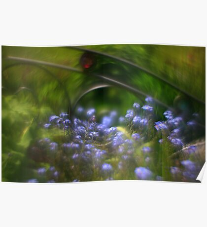 Helios 44 4 lens inversion - The Bedstead Poster