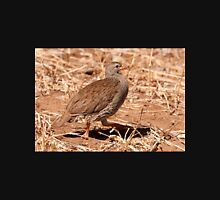 Natal Francolin, Kruger National Park, South Africa Unisex T-Shirt