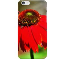 Salsa Red Coneflower iPhone Case/Skin
