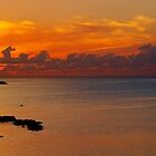 Jamaican Sunset 2014 by tigerwings