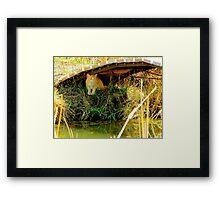 What Lurks Under The Bridge Framed Print