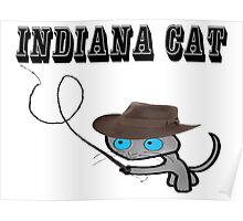 Indiana Cat Poster