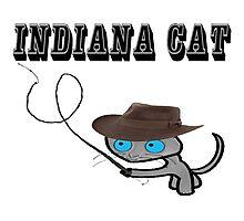 Indiana Cat Photographic Print