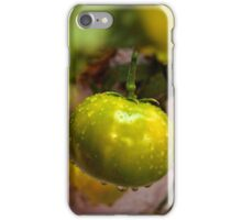 One Green Tomato iPhone Case/Skin