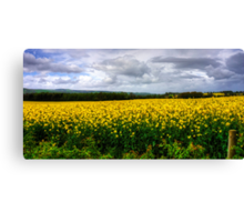 A Yellow and Pleasant Land Canvas Print