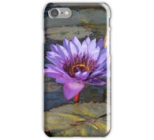 Purple Water Lily iPhone Case/Skin