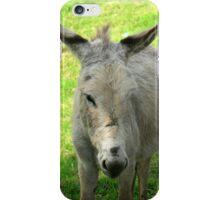 White Donkey iPhone Case/Skin