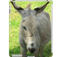 White Donkey iPad Case/Skin