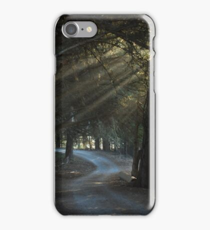 Sun rays in the forest iPhone Case/Skin