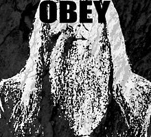 Albus Dumbledore Harry Potter Typography OBEY Poster by geekchicprints