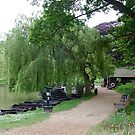 Weeping Willow, English Countryside by greenjewels77