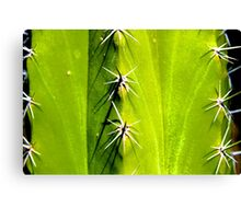 Ouch Canvas Print