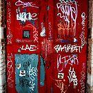 Red Door by greenjewels77
