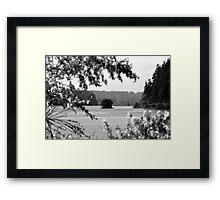 Tree Island Framed Print